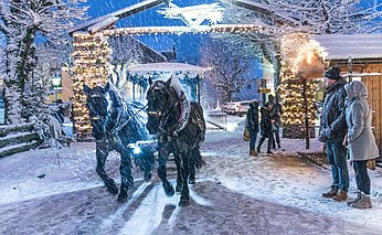 Strobl Advent, Pferdekutsche, © WTG